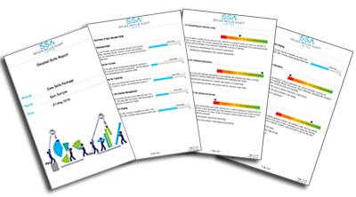 Easy to read sales assessment reports
